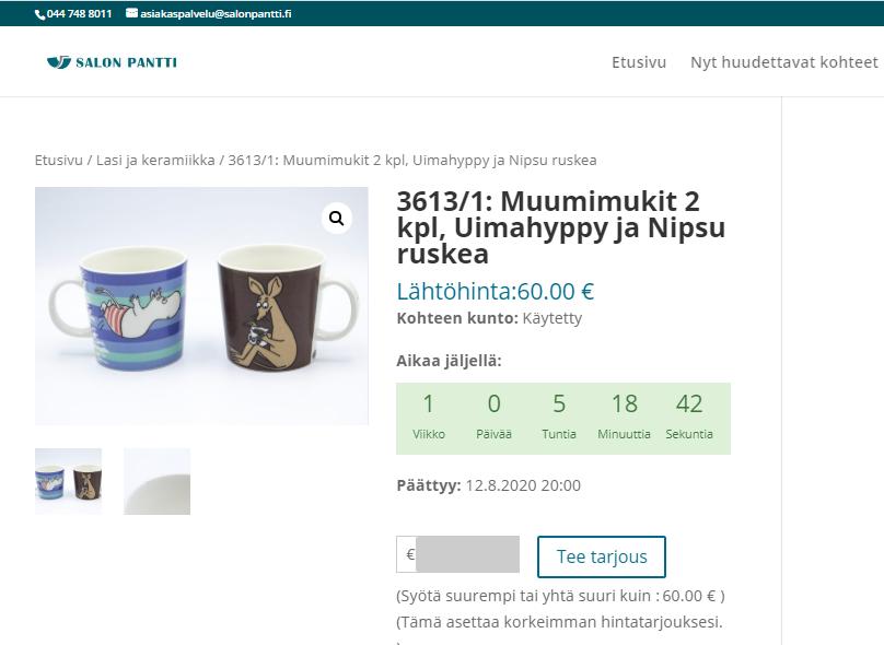 Huutokauppasovellus ja kotisivut Salonpantti Oy:lle